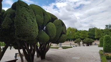 trip-to-madrid_florisdana (26)