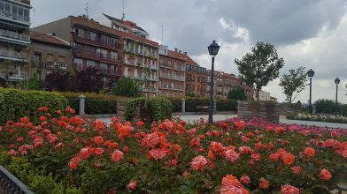 trip-to-madrid_florisdana (35)
