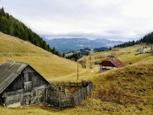Poarta Carpaților – destinație ecoturistică